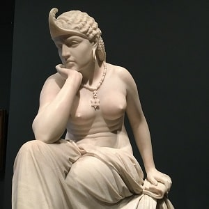 gol kip Indijke